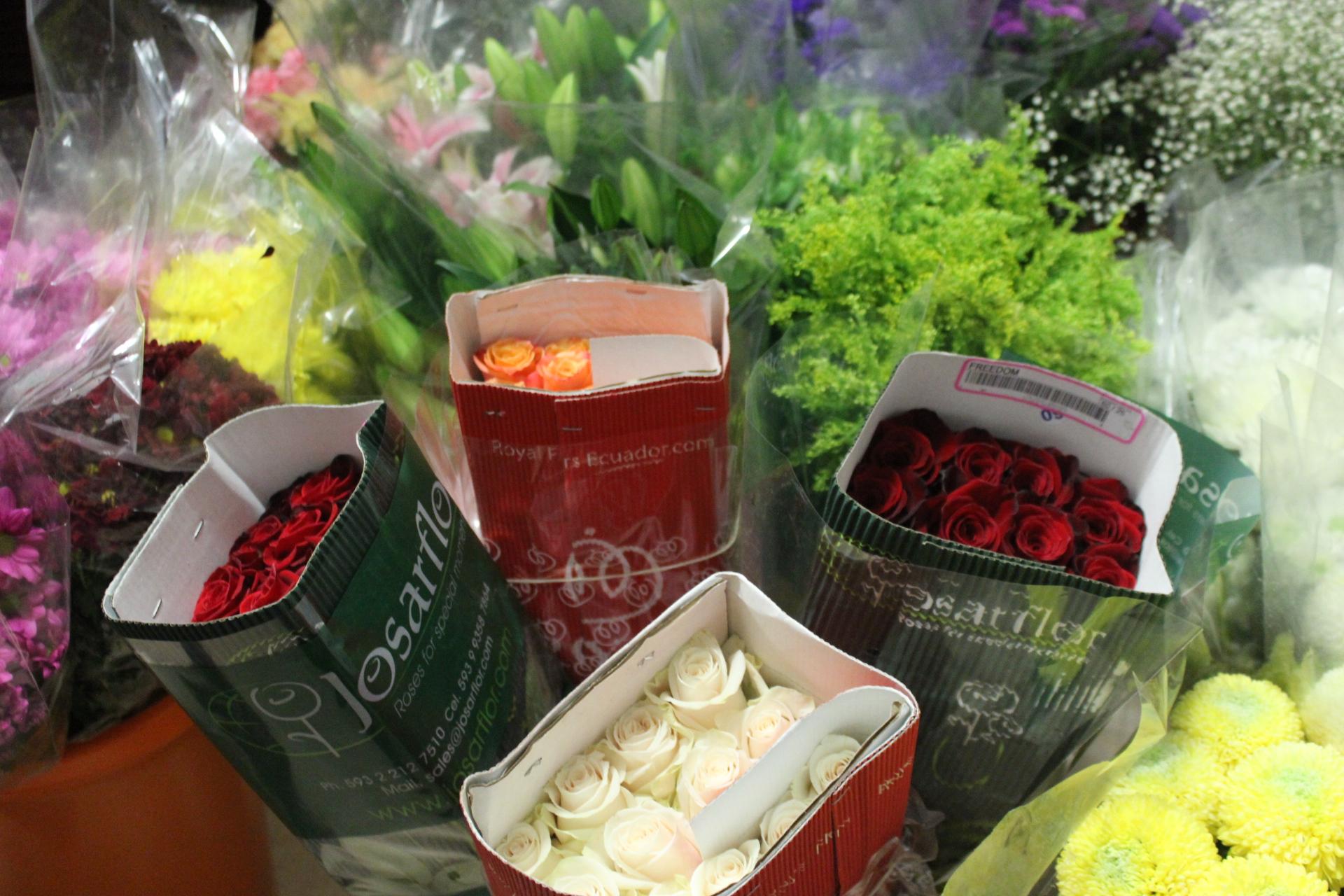 Las rosas presentes para los santos